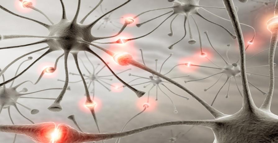 Nöral Terapi